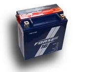 Аккумулятор FORSE AGM 6мтс 16 А/ч FRM 1216 BS