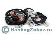 Проводка жгут Honling QT-2