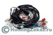 Проводка жгут Honling QT-4